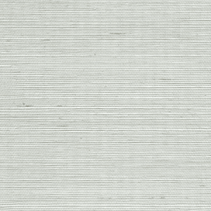 WTW GT3980 ORGANIC SISAL Refresh Scalamandre Wallpaper