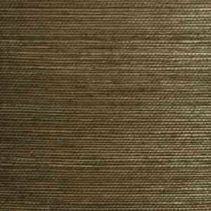 WTW SG2201 NATURAL SISAL Khaki Scalamandre Wallpaper