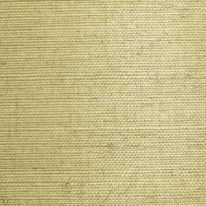 WTW SG5620 NATURAL SISAL Moss Scalamandre Wallpaper