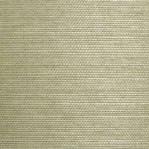 WTW SG5625 NATURAL SISAL Celadon Scalamandre Wallpaper