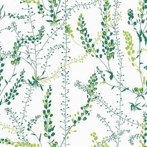 WV1787 Bladranker Botanical Green Brewster Wallpaper