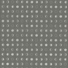 CE3930 Lunar York Wallpaper