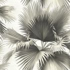 PS40100 ENDLESS SUMMER Black Palm Brewster Wallpaper