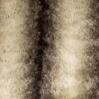A9 0004 FURR FURRY Faux Silver Fox Scalamandre Fabric