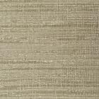 WPW1263 SYLVAN Pyrite Winfield Thybony Wallpaper