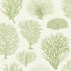 107/2008-CS SEAFERN Soft Green Cole & Son Wallpaper