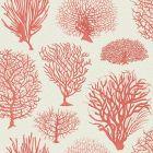 107/2011-CS SEAFERN Coral Cole & Son Wallpaper