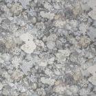S1138 Flint Greenhouse Fabric