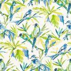 RENFREW 1 Bluebird Stout Fabric