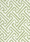 6620-01 JAVA GRANDE New Jungle on Tint Quadrille Fabric