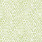 2510-03WP MAZE Jungle Green Quadrille Wallpaper