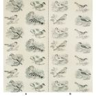 P2017103-8 SUMTER PAPER Charcoal Lee Jofa Wallpaper