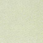 SC 0002 27239 RISA WEAVE Fern Scalamandre Fabric