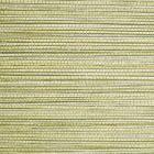 SC 0004 WP88441 WILLOW WEAVE Grass Scalamandre Wallpaper