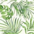 York SO2450 Paradise Palm Wallpaper