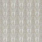 B8 0008 PARO PARANOA Frost Scalamandre Fabric