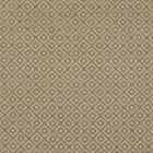 F2758 Taupe Greenhouse Fabric