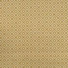 F2804 Gold Greenhouse Fabric