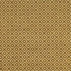 F2810 Topaz Greenhouse Fabric