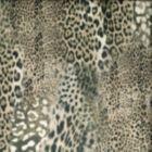 FARR Dove 03 Norbar Fabric