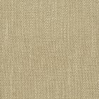 JUICY 1 Sand Stout Fabric
