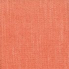 JUICY 27 Coral Stout Fabric