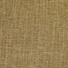 S2287 Mocha Greenhouse Fabric